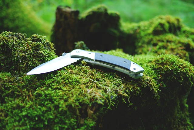 Survival knife on top of moss in the wilderness