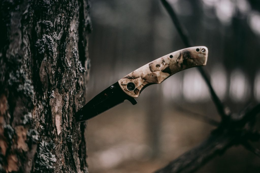 Hunting knife stuck in tree bark