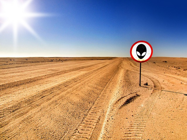 Sign of alien life in the desert.