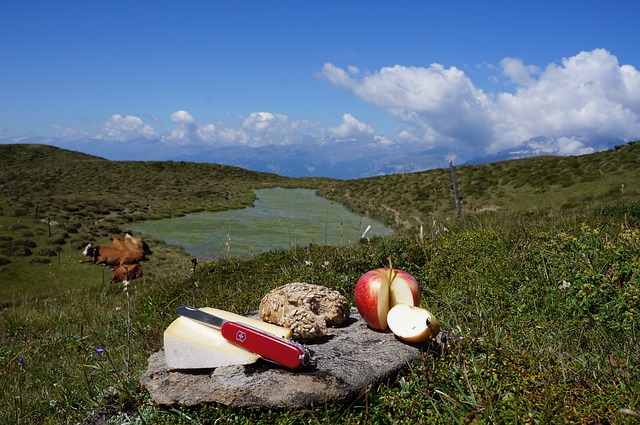 Swiss army knife, apple and cheese on rock in field.