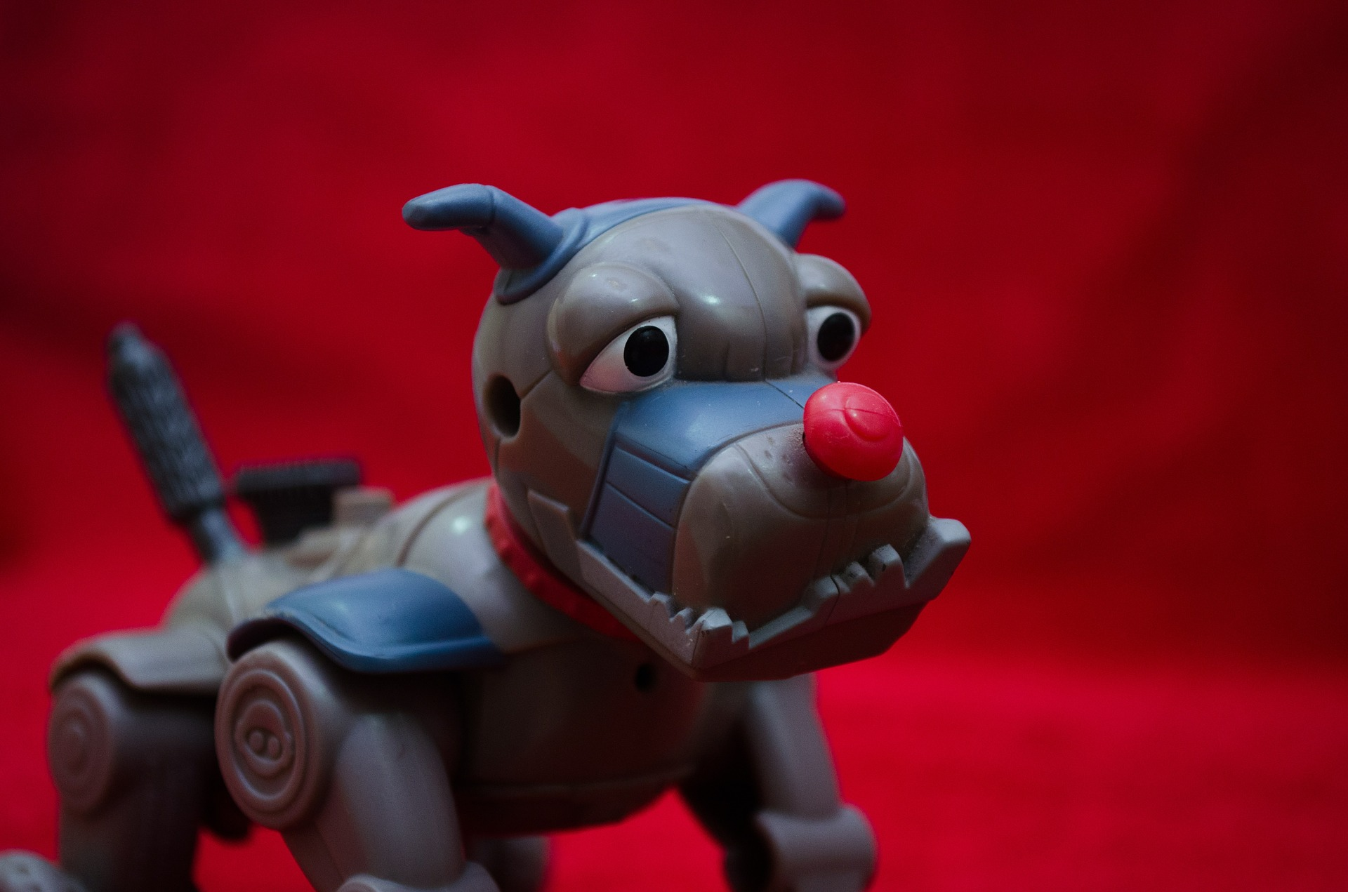 Toy robot dog