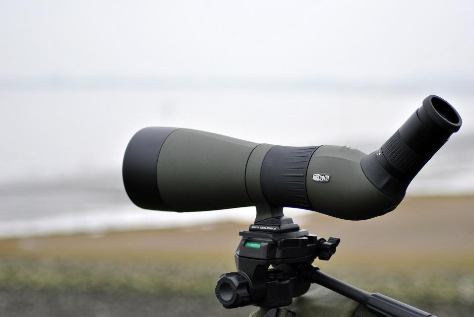 Spotting scope on tripod